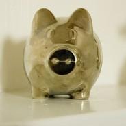 Bring Back Cedric the Pig!